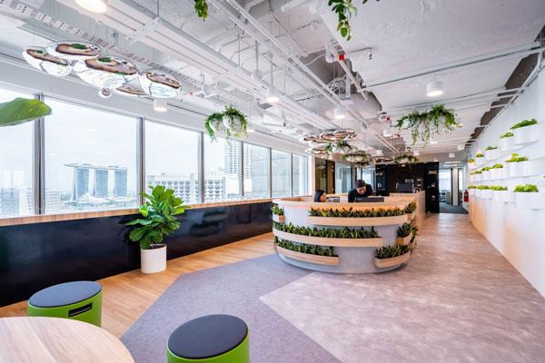 Trong phong cách thiết kế văn phòng Eco, cây xanh là nguyên tắc không thể thiếu.