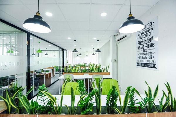 Không gian văn phòng làm việc đầy sức sống khi áp dụng phong cách Eco.